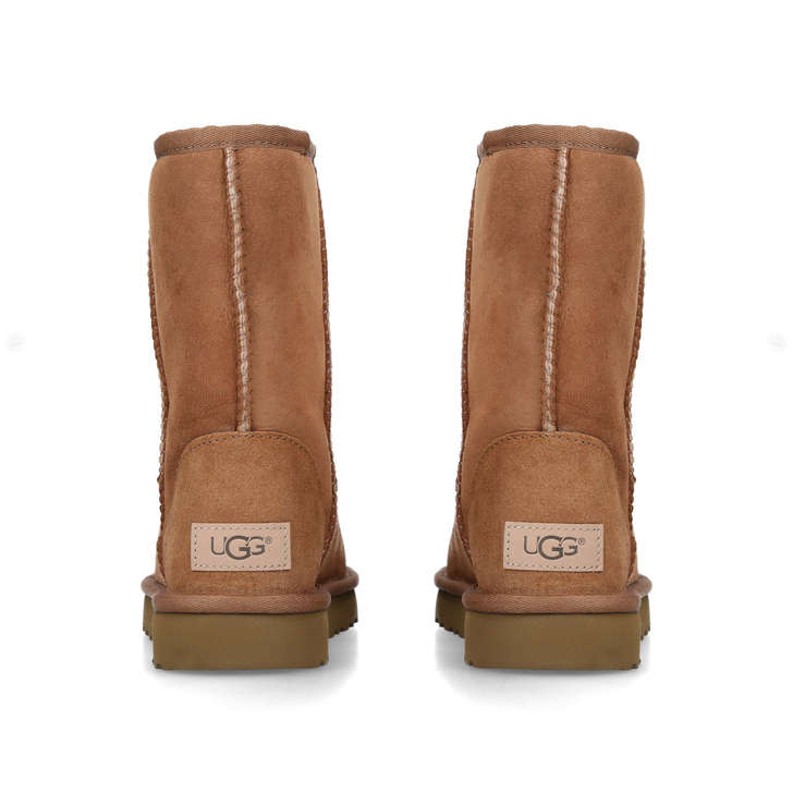 brown short uggs