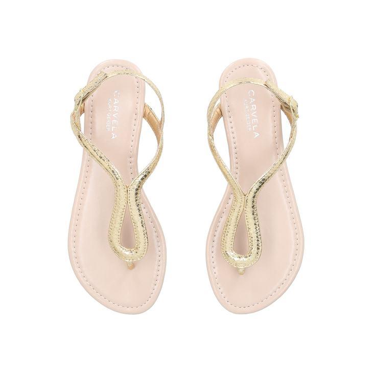 Acorn Shoes Store Locator